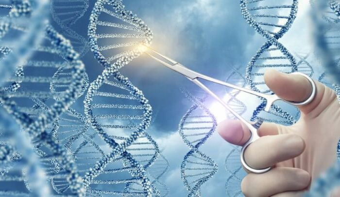 DNS un ārsta roka | Cilmes šūnu banku alianse | LYL BioBank Hearts